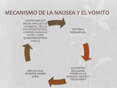 IMAGEN 1: MECANISMO DE LA NÁUSEA Y EL VÓMITO
