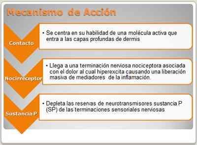 capsaicina-mecanismo-de-accion