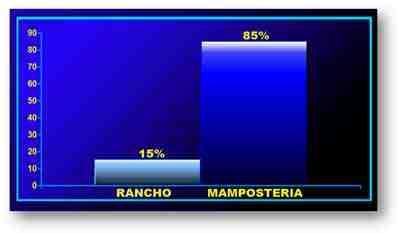enfermedad-de-Chagas-lesiones-gastricas-vivienda