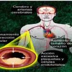 Anestesia en pacientes consumidores de drogas de diseño